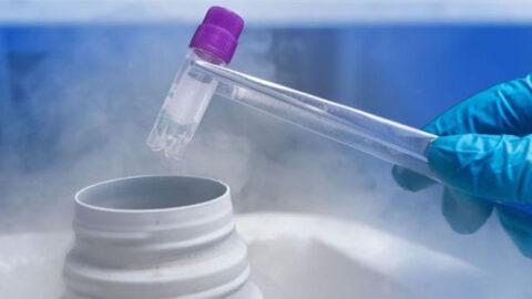 Κρυοσυντήρηση – Μέθοδος Freeze all